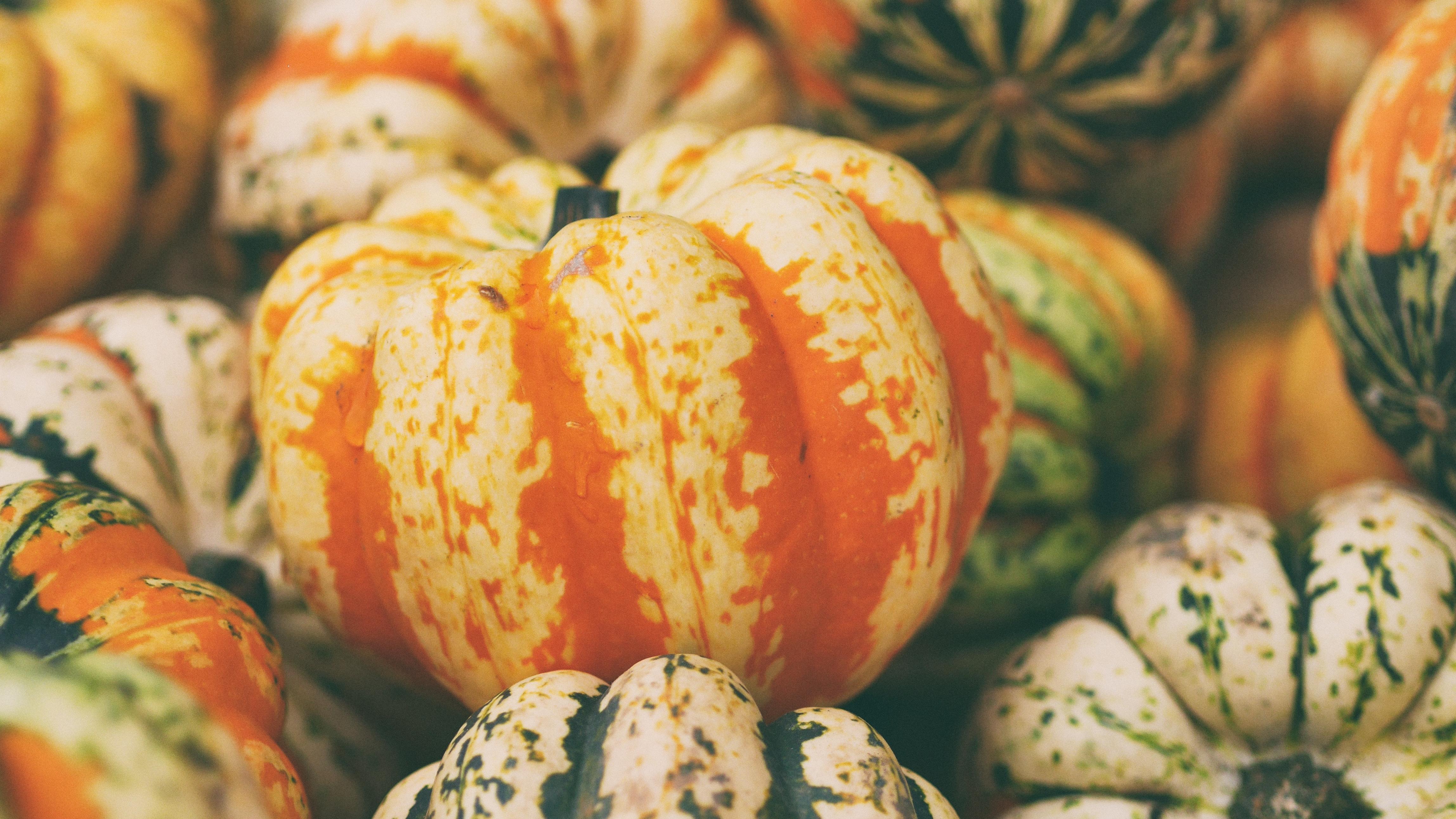 Pumpkin Spice Body Scrub